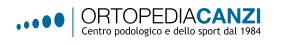 logo CANZI